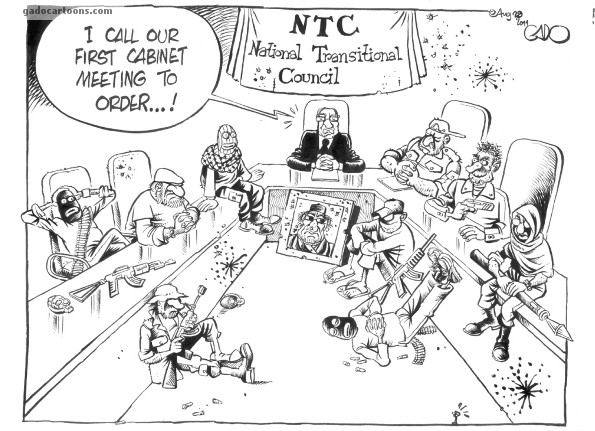 National Transitional Council