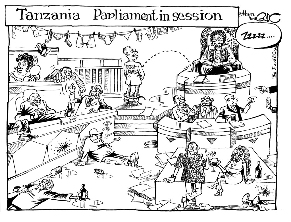 EA May 06 13 TZ Parliament in session