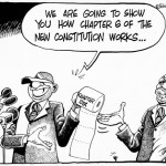 We are going to show you how chapter 6 of the new constitution works