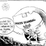 Maize Scandal