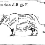 Where does AID go?!