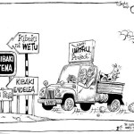 Kibaki Project