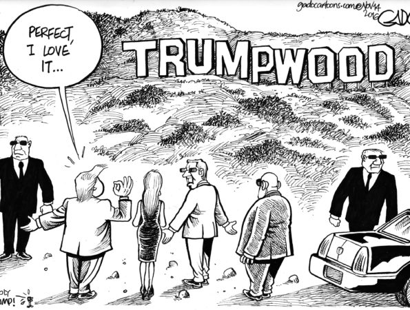 Trumpwood
