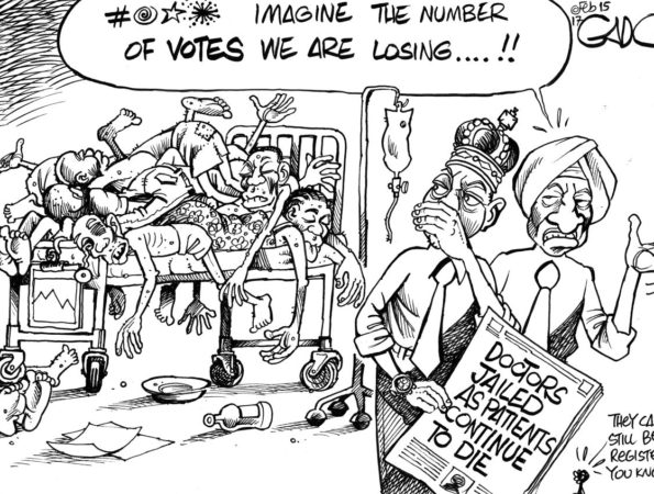 Govt and the Doctors Strike