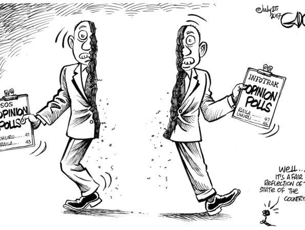 Split Opinion Polls